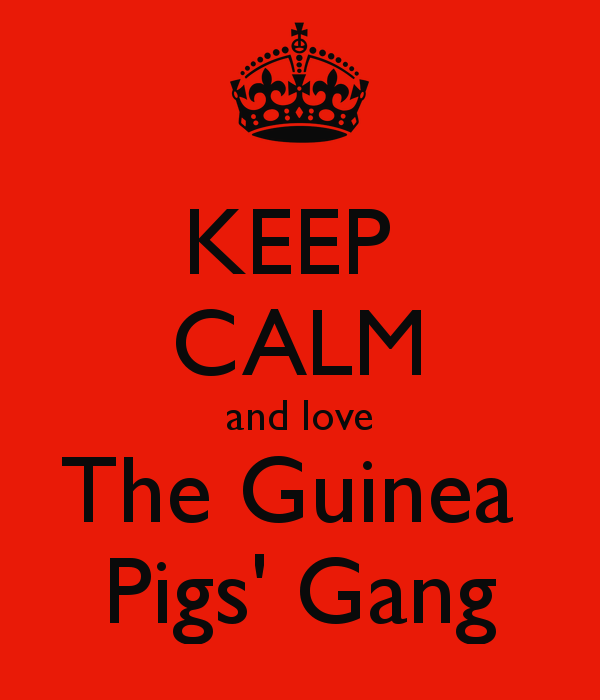 keep-calm-and-love-the-guinea-pigs-gang