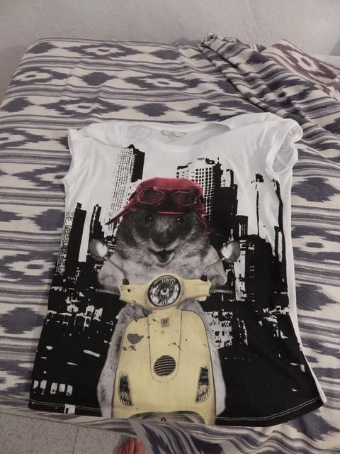 Guinea_pig_t-shirt